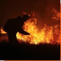 Какие бывают виды пожаров